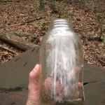 Mason jar found at still #1
