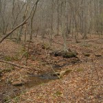 The confluence of two creeks - the perfect location for a moonshine still operation.