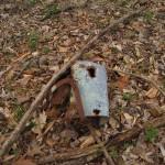 A rusting bucket