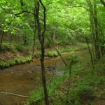 Jordan Creek.
